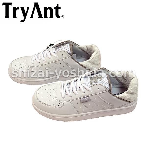 TRYANT-C-21-0101